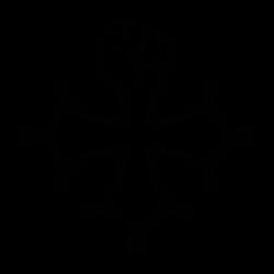 Croix des templiers et poing