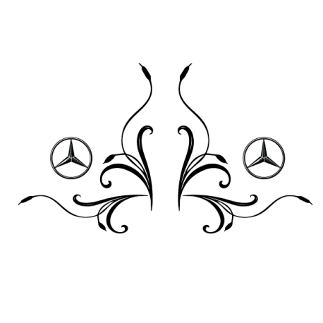 kit decor laterales roseau Mercedes